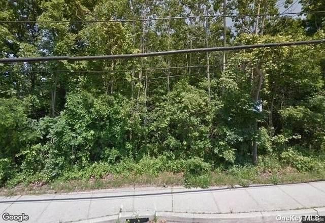 Neighborhood Road, Shirley, NY 11967 (MLS #3333115) :: Howard Hanna | Rand Realty
