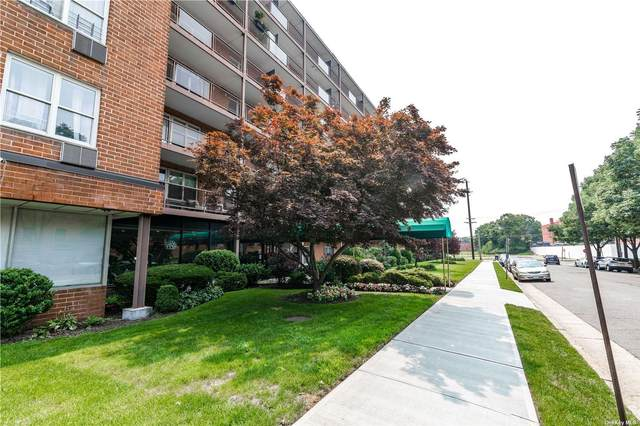 20 Wendell Street 39B, Hempstead, NY 11550 (MLS #3334143) :: Goldstar Premier Properties