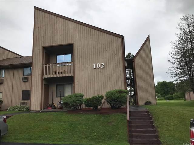 102 Davos Point 4G, Fallsburg, NY 12733 (MLS #3338272) :: Goldstar Premier Properties