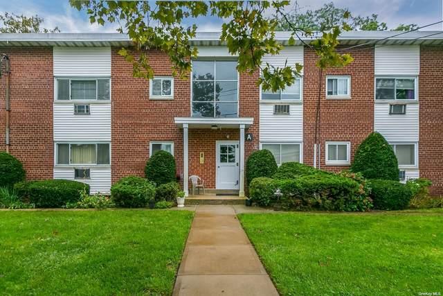 125 Hempstead Garden A1b, W. Hempstead, NY 11552 (MLS #3344625) :: McAteer & Will Estates | Keller Williams Real Estate