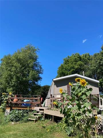 22 Samsonville, Kerhonkson, NY 12446 (MLS #3345900) :: Cronin & Company Real Estate