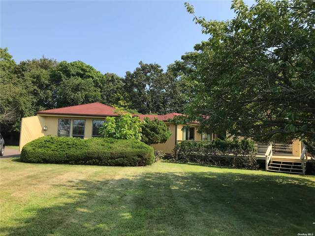 281 Mill Pond Lane, Water Mill, NY 11976 (MLS #3345949) :: Cronin & Company Real Estate