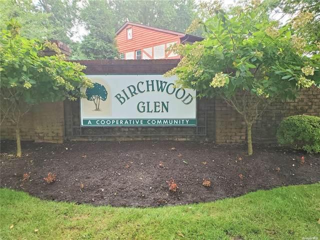 E13 Glen Hollow Drive E13, Holtsville, NY 11742 (MLS #3346379) :: Laurie Savino Realtor