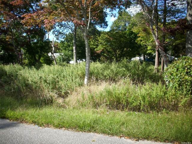 263 Elm Road, Mastic Beach, NY 11951 (MLS #3346628) :: Nicole Burke, MBA   Charles Rutenberg Realty