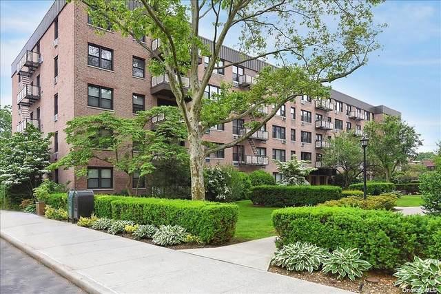 3 Birchwood Court 4O, Mineola, NY 11501 (MLS #3346958) :: Laurie Savino Realtor