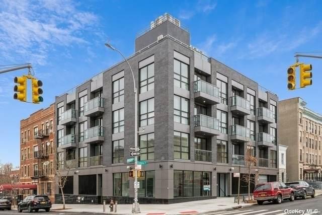 279 Sumpter Street 4A, Ocean Hill, NY 11233 (MLS #3346999) :: McAteer & Will Estates | Keller Williams Real Estate