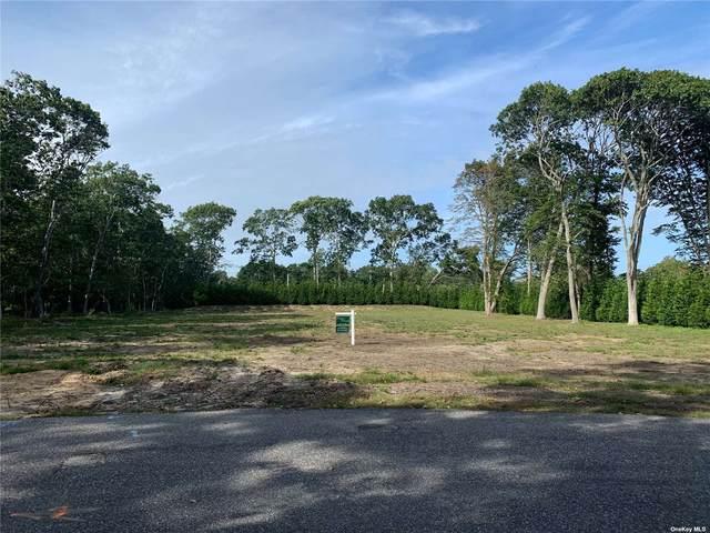 14 Pen Craig Road, Quogue, NY 11959 (MLS #3347980) :: Signature Premier Properties