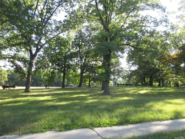 73-76 Springfield Boulevard Upper, Bayside, NY 11364 (MLS #3348719) :: Laurie Savino Realtor