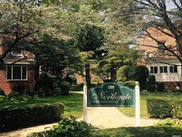 250 Central Avenue D223, Lawrence, NY 11559 (MLS #3350175) :: Cronin & Company Real Estate
