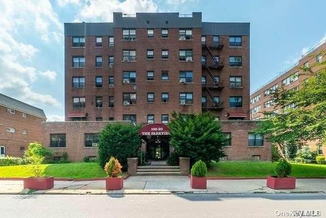 165-20 Highland Avenue #303, Jamaica, NY 11432 (MLS #3350589) :: Cronin & Company Real Estate