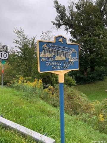 0 Franklin Walton Road, Other, NY 00000 (MLS #3351084) :: RE/MAX RoNIN