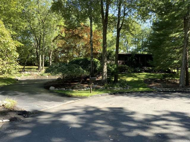 4 Rise Road, New City, NY 10956 (MLS #3352569) :: Signature Premier Properties