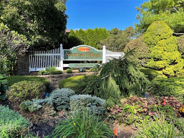 73 Revere Drive #73, Sayville, NY 11782 (MLS #3352806) :: Carollo Real Estate