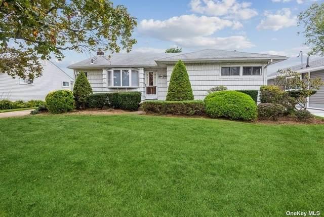550 Chestnut Lane, East Meadow, NY 11554 (MLS #3352906) :: Signature Premier Properties