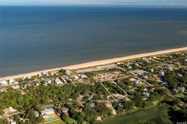 310 Lake Avenue, Southold, NY 11971 (MLS #3352996) :: Cronin & Company Real Estate