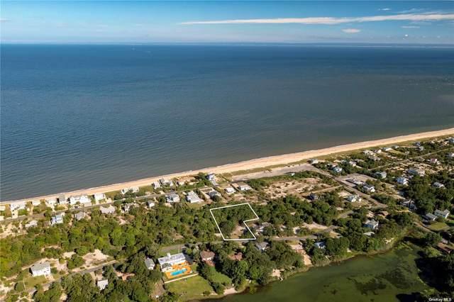 780 Lake Drive, Southold, NY 11971 (MLS #3352997) :: Cronin & Company Real Estate