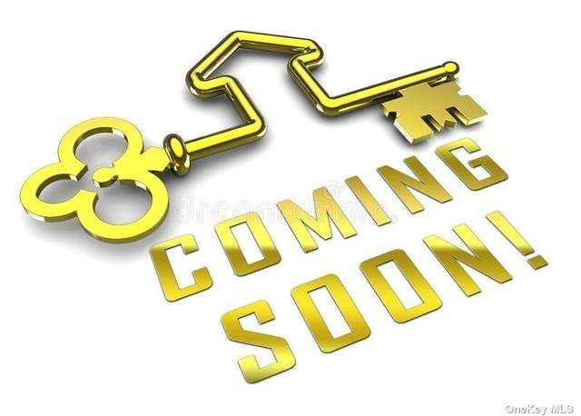 11 W Shore Drive, Patchogue, NY 11772 (MLS #3353457) :: Signature Premier Properties