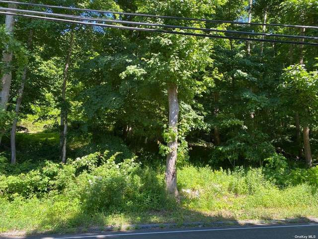 639 Peekskill Hollow Road, Putnam Valley, NY 10579 (MLS #3354082) :: Signature Premier Properties