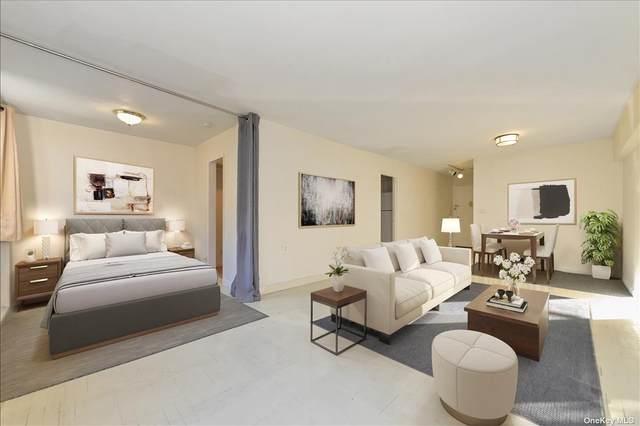 2 Birchwood Court 1P, Mineola, NY 11501 (MLS #3354965) :: Cronin & Company Real Estate