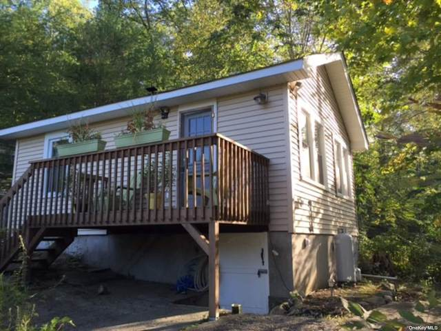 5 Forest Glen Drive, Greenwood Lake, NY 10925 (MLS #3355012) :: The Home Team