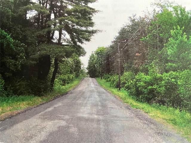 Boyce Road, Nassau, NY 12123 (MLS #3355267) :: Shalini Schetty Team