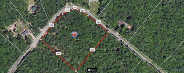 Lot #1 Maple Lane, Narrowsburg, NY 12764 (MLS #4216701) :: Mark Seiden Real Estate Team