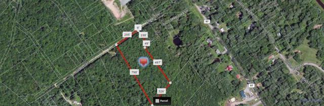 Lot 1.6 Foster Trail, Narrowsburg, NY 12764 (MLS #4217025) :: Mark Seiden Real Estate Team