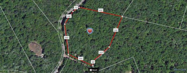 lot #77 Perry Pond Road, Narrowsburg, NY 12764 (MLS #4217329) :: Mark Seiden Real Estate Team