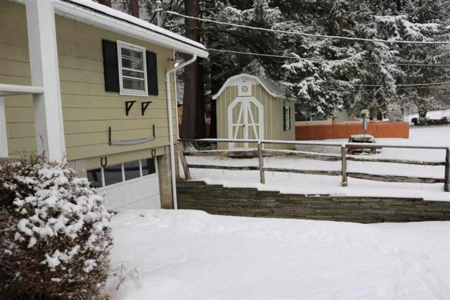 316 Island Road Left, Hancock, NY 13783 (MLS #4217913) :: Mark Seiden Real Estate Team