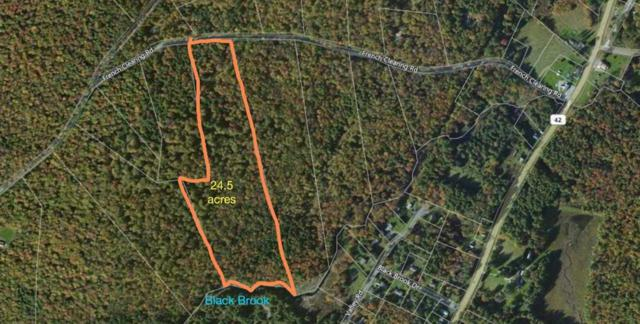 1.18 French Clearing, Forestburgh, NY 12777 (MLS #4218048) :: Mark Seiden Real Estate Team