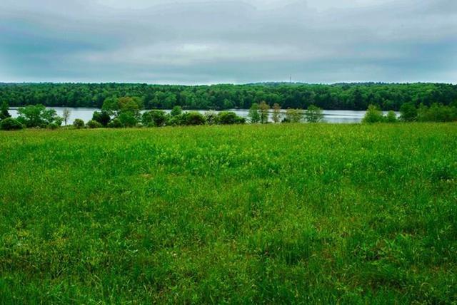 (9) Lemon Brook Road, White Lake, NY 12786 (MLS #4218328) :: Mark Seiden Real Estate Team