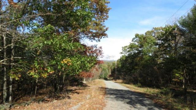 Lot #28 Wood Oak Drive, Narrowsburg, NY 12764 (MLS #4219422) :: Mark Seiden Real Estate Team