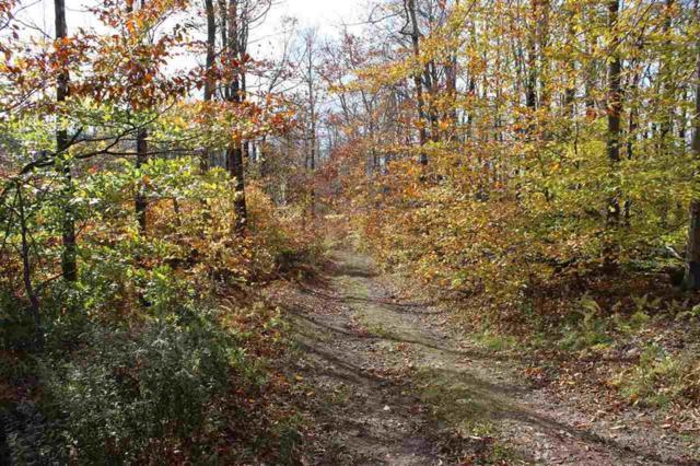 215 Dirig Road, Hancock, NY 13783 (MLS #4219520) :: Mark Seiden Real Estate Team
