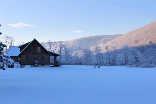 229 Airport Road, Call Listing Agent, NY 13754 (MLS #4219867) :: Mark Seiden Real Estate Team