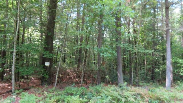 lot #8 Perry Pond Road, Narrowsburg, NY 12764 (MLS #4220000) :: Stevens Realty Group