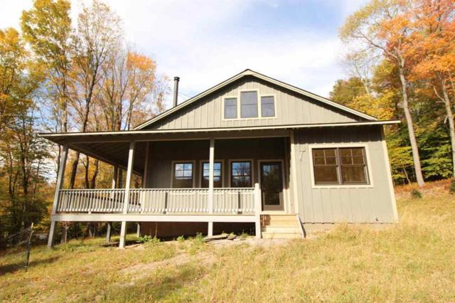 20 Blueberry Hill Drive, Lew Beach, NY 12758 (MLS #4220110) :: Mark Seiden Real Estate Team
