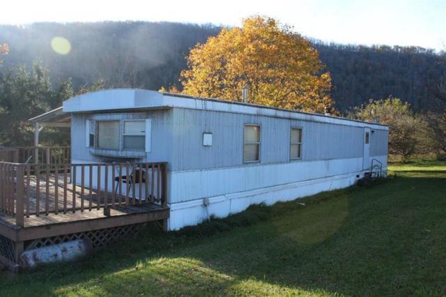 15259 County Highway 17, Roscoe, NY 12776 (MLS #4220319) :: Mark Seiden Real Estate Team