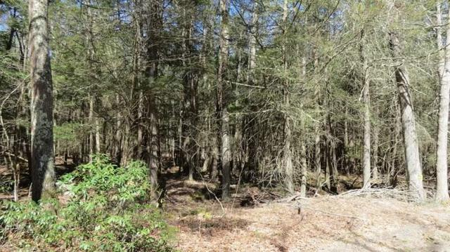 Lot #16 Perry Pond Road, Narrowsburg, NY 12764 (MLS #4220375) :: Mark Seiden Real Estate Team