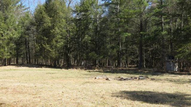 Lot #15 Perry Pond Road, Narrowsburg, NY 12764 (MLS #4220378) :: Mark Seiden Real Estate Team