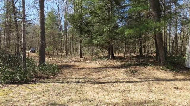 Lot #15 & #16 Perry Pond Road, Narrowsburg, NY 12764 (MLS #4220379) :: Mark Seiden Real Estate Team