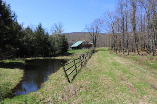 20.1.20.112 Alder Lake, Livingston Manor, NY 12758 (MLS #4220453) :: Mark Seiden Real Estate Team