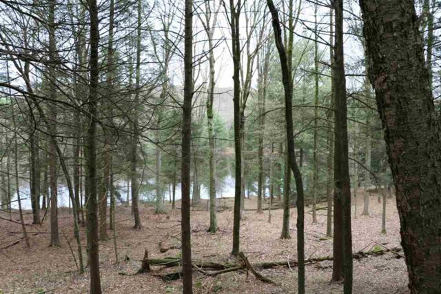 Lot 9 Kenoza Trail, Kenoza Lake, NY 12750 (MLS #4220568) :: Mark Boyland Real Estate Team