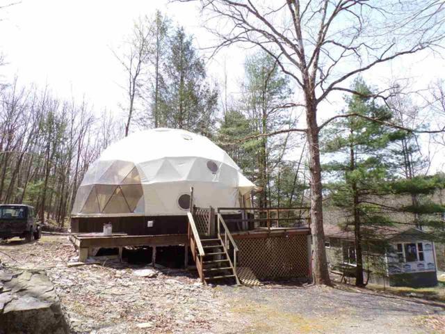 104 Yulan Barryville, Barryville, NY 12719 (MLS #4220626) :: Mark Seiden Real Estate Team