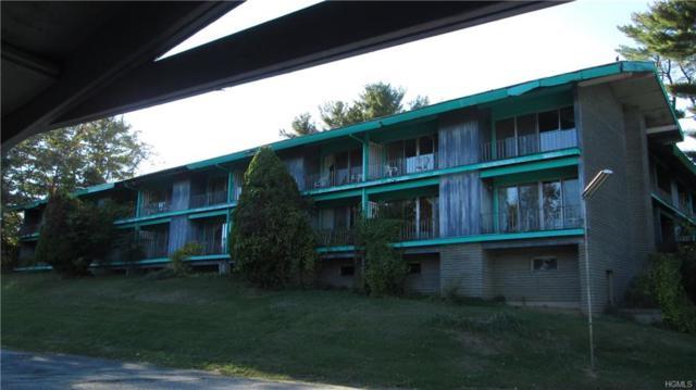 175 S Main Street, Ellenville, NY 12428 (MLS #4546757) :: Mark Boyland Real Estate Team