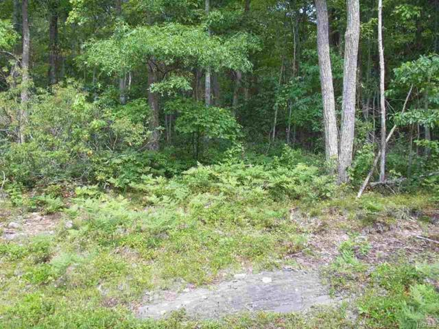 37 Trillium Trail, Cochecton, NY 12726 (MLS #4616194) :: Michael Edmond Team at Keller Williams NY Realty
