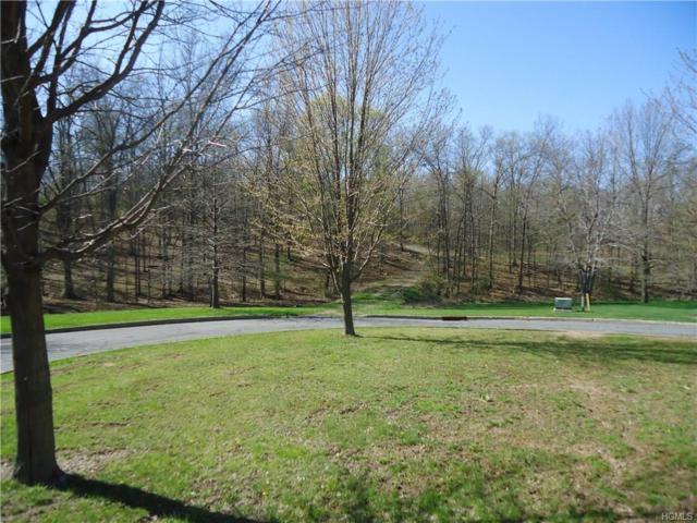 Andrea Court, Goshen, NY 10924 (MLS #4617913) :: Mark Boyland Real Estate Team