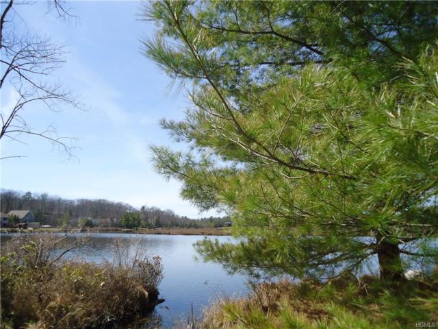 W Lake Shore Drive, Rock Hill, NY 12775 (MLS #4623295) :: Mark Boyland Real Estate Team