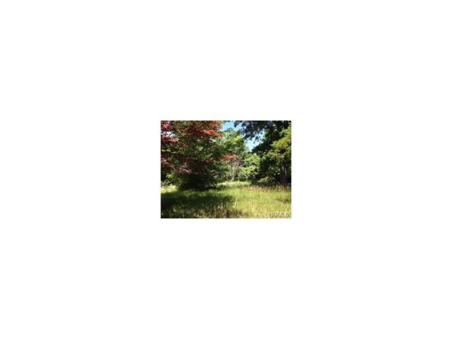 550 Rock Cut Road, Walden, NY 12550 (MLS #4650474) :: Mark Boyland Real Estate Team