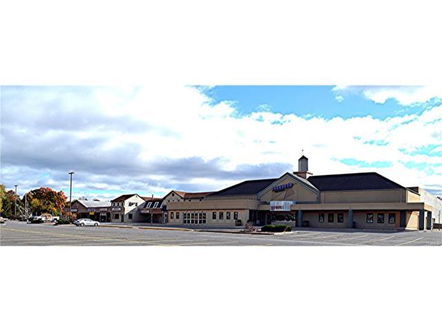 215 Quassaick Avenue, New Windsor, NY 12553 (MLS #4650782) :: Mark Boyland Real Estate Team