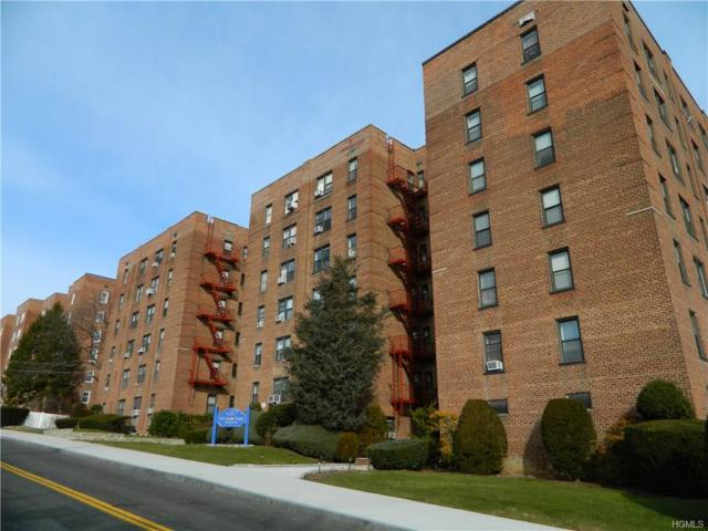 164 Church Street 3B, New Rochelle, NY 10805 (MLS #4700471) :: Mark Boyland Real Estate Team